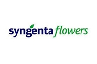Product Manager - Flowers