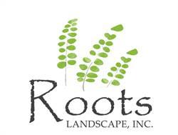 Roots Landcape Donna Costa