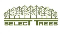 Select Trees Enterprises Will Glenn