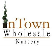 Intown Wholesale Nursery Virginia Melton