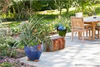 Eco-Chic Gardens Ann Laughlin