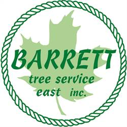 Barrett Tree Service East, Inc Dalya Zaehring