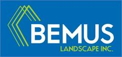 Bemus Landscape Leticia Benitez